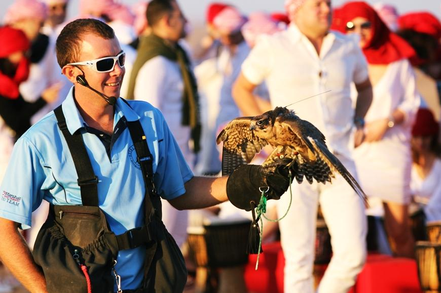 Dubai: Heritage Falknerei und Wildlife Adventure Safari